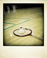 [105/365] fly little birdie (beaureve ♥) Tags: wood sports birdie shiny exercise empty 365 nets gym badminton shuttlecock poladroid