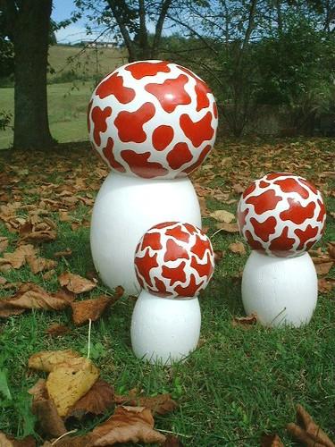 champignons Tintin