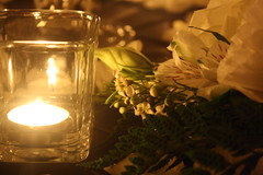 Flowers in Candlelight