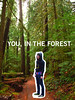 cover comp/image treatment idea (nicole goes to school) Tags: oregon forest portland typography graphicdesign student studentwork forestpark portlandstateuniversity experimentaltypography typetwo culturalinstitution nicolelavelle forestparkconservancy