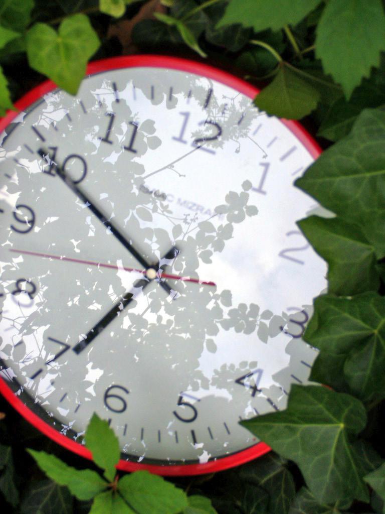 time lands