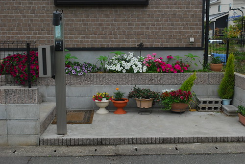 the front planter box