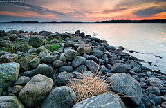 Home of the swan (Rob Orthen) Tags: sunset sea sky rock suomi finland landscape swan nikon rocks europe nest dusk scenic rob tokina 09 nd scandinavia 06 meri maisema vesi syksy pinta d300 joutsen pes gnd 1116 nohdr orthen leefilters roborthenphotography tokina1116 tokina1116mm28 seafinland