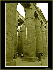 (899) Karnak Temple (Luxor) Egypt (unicorn 81) Tags: africa old travel building history architecture trekking geotagged northafrica egypt unesco relief egyptian egipto karnak luxor 2009 ägypten egitto egypte reise egypten weltkulturerbe ancientegypt rundreise roundtrip amun egipt égypte mapegypt misr nordafrika theben egypttrip heiligtum april2009 ægypten luxortempel aegyptus αίγυπτοσ ægyptusintertravel ägyptenreise schulzaktivreisen meinjahr2009