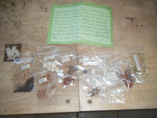 Seeds Seeds & More SEEDS!