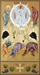 Transfiguration of the Lord (MatthewDGarrett) Tags: mountain church saint st john james icons catholic god saints icon lord christian peter moses orthodox elijah prophet jesuschrist feastday mounttabor orthodoxy religiousart iconostasis sacredart festal holytransfiguration iconographer icongraphy