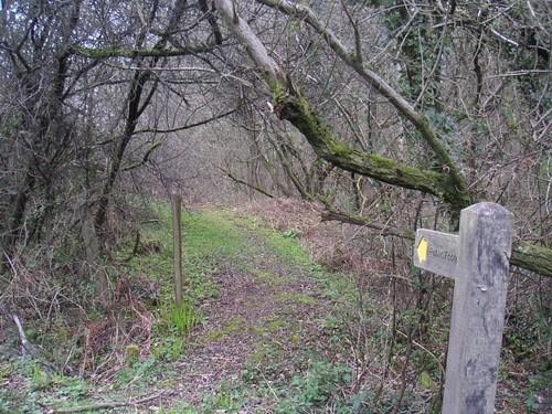 small-path-off-lodsworth-road