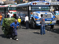 Xela's Busy Chicken Bus Terminal