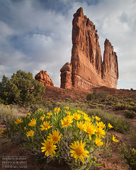 Courthouse Towers (Stephen Trainor) Tags: usa utah archesnationalpark courthousetowers