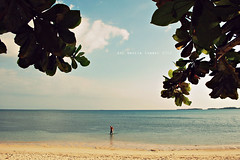 my private paradise (aui_manila) Tags: trees sea beach leaves clouds nikon paradise skies framed empty frame waters deserted pilipinas pangasinan d40 turquoiseseas tambobong auimanila dasolpangasinan