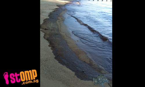 Oil slicks line East Coast beach, stinking and polluting the area