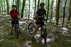Im Wald kurz nach Wissembourg