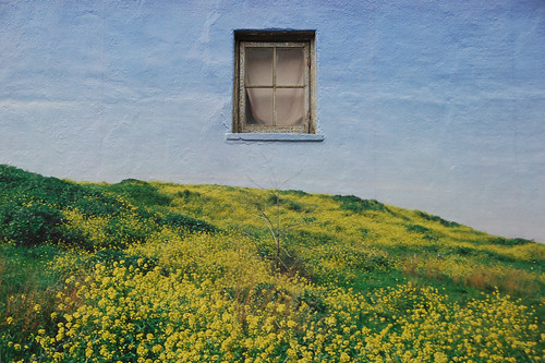 Window with Elle Flanders & Tamira Sawatzky - What Isn't There - #154/365 by PJMixer