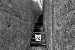 Steps (tomoa_fsn) Tags: monochrome stairs steps osaka canonefs1022mmf3545usm eoskissx3