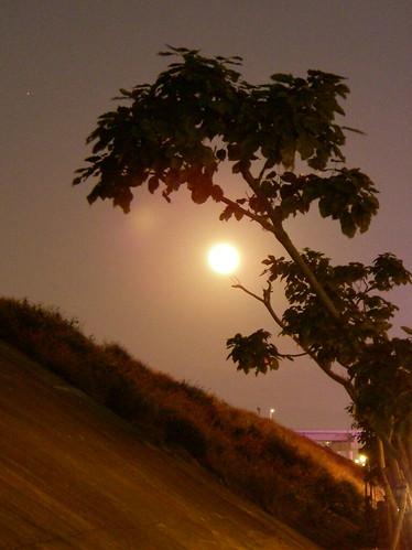 像太陽的大月亮