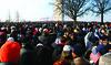 Crowd(ed).