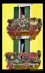 i balconi di Bardolino (FIORASO GIAMPIETRO ITALY....) Tags: travel italy europe verona viaggio vacanza lagodigarda veneto fioraso giampietro overtheexcellence fiorasogiampietro bradolino