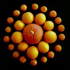 Orange (efo) Tags: stilllife orange color tangerine symmetry squash notbw yashica44