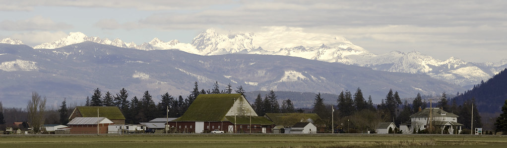 Skagit valley farm