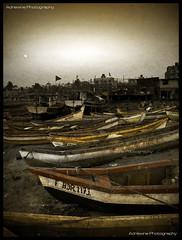 Boat F BDR. 1173. (AdreWine) Tags: india bombay bom mumbai fishmarket versovabeach