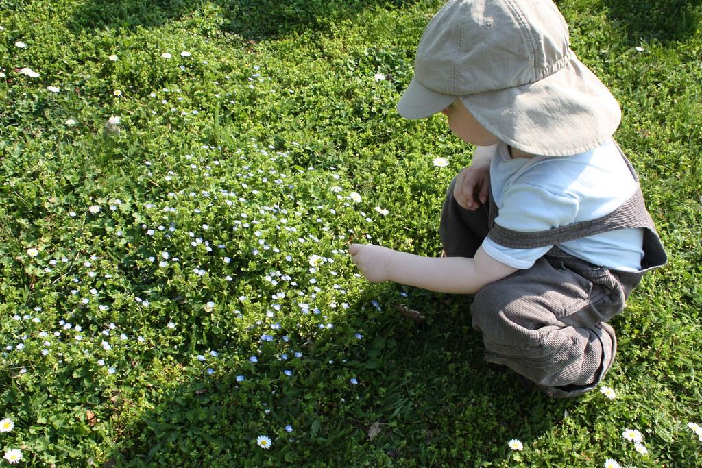 Beim Blumenpflücken
