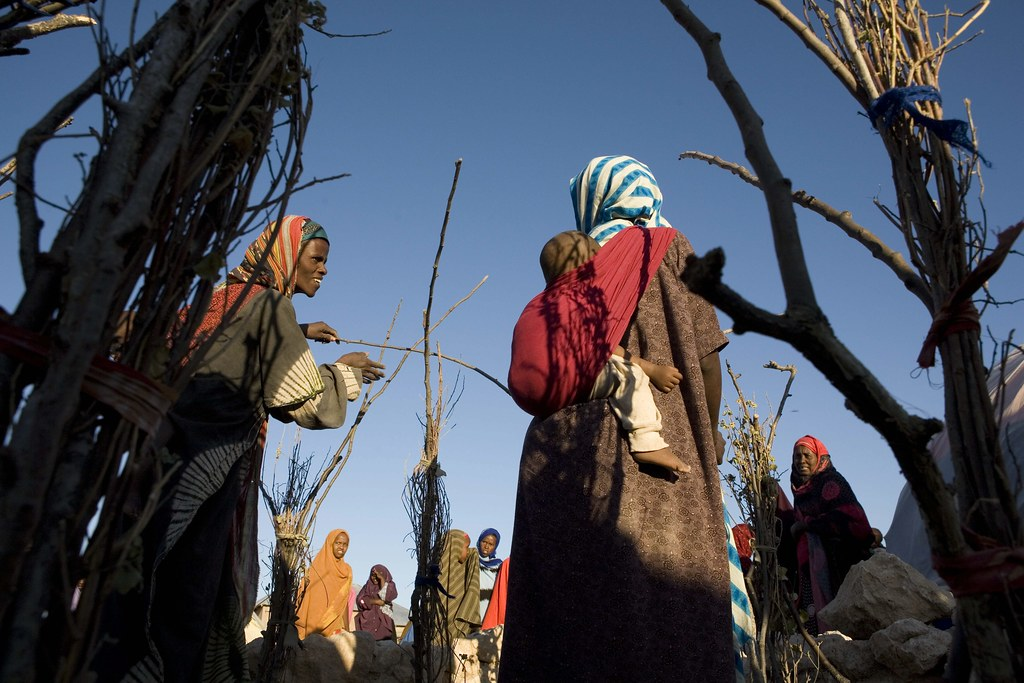 UNHCR News StoryNumber of internally displaced people remains stable at 26 million