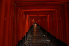 ?????? Fushimi Inari Shrine