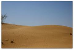 "rohi desert     ""PAKISTAN"" (TARIQ HAMEED SULEMANI) Tags: pakistan desert punjab tariq cholistan bahawalpur rohi derawarfort abigfave concordians sulemani jeeprally deranawab"