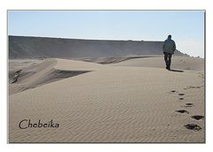 Just walking ...to meet a dog (mhobl) Tags: dog sahara walk dunes morocco maroc marokko westsahara sanddnen chebeika