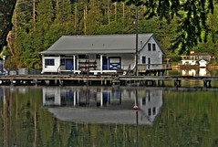 Dock House (Andrew E. Larsen) Tags: house reflection water marina reflections calm serenity lakebay papalars a3b andrewelarsen