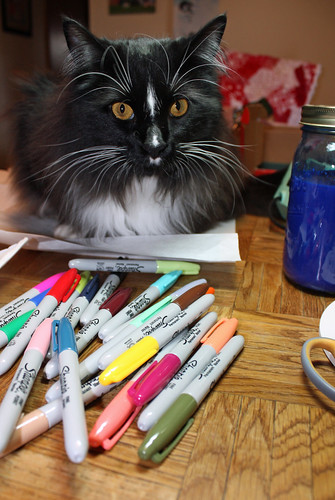 Gus with sharpies