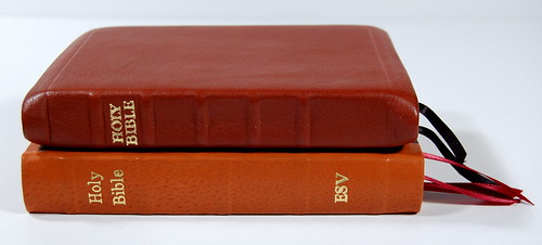 Deluxe Compact ESV in Pigskin - Comparison 2
