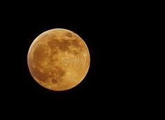 Lune10-janvier-2009-3285bis (imagi) Tags: moon black france night lune canon dark iso100 noir space lille nuit espace solarsystem redmoon astronomie pleinelune imagi 80200f28l eos400d systèmesolaire lunerousse jeanmichelleman