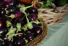 little eggplants at market