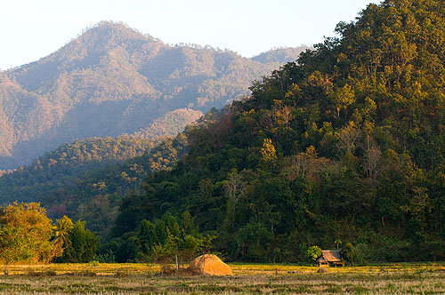 The hills surrounding Mae Hong Son -- a three-minute bike ride from my house