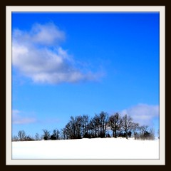 Winter And Blue (Ronaldo F Cabuhat) Tags: travel trees winter vacation snow newyork cold ice clouds canon photography cool scenery frost picture bluesky wintry winterinny canoneosdigitalrebelxti cabuhat winterandblue feurabushny
