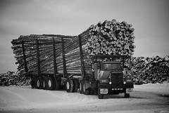 Big Mack (Rock Arsenault) Tags: truck camion mack estremità
