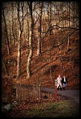 Here the journey starts (Kirsten M Lentoft) Tags: trees winter people sunlight forest denmark path lyngby nymølle kirstenmlentoft