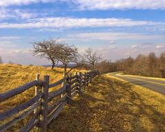Tuggles Gap ~ Blue Ridge Parkway MP 166