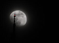 When the Empire met the moon (noamgalai) Tags: nyc light moon ny newyork star photo picture led photograph esb antena empirestatebuilding redlight    noamg noamgalai