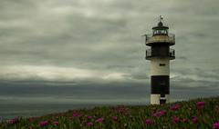 Faro Isla Pancha (JoseRamonGarciaG) Tags: flores faro mar nikon lugo lilas ribadeo d80 capturando islapancha