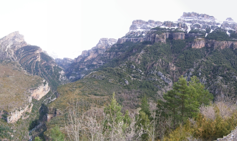 Panorama 31