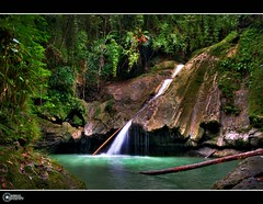 waterfall of tears | Explore (rev_adan) Tags: city trees light green wet water grass