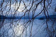 Organised Voyeurism (jasontheaker) Tags: uk blue winter sunset tree beach boats spring branches cumbria windermere belleisle bowness ambelside jasontheaker
