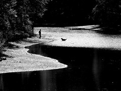 alone with the dog ( Peter & Ute Grahlmann ) Tags: black white nature tree reflections pond dog man silhouette art water river peace bej anawesomeshot 35faves artlegacy 50faves saariysqualitypictures wow1 wow2 wow3 wow4 wow5 wowhalloffame artistoftheyearlevel2
