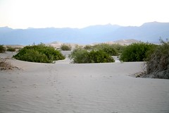 Death Valley National Park-358