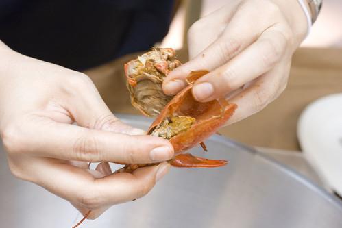 Crawfish Eating Demo 9