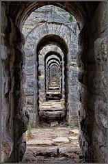 Labyrinth (Yavuz Alper) Tags: cycle labyrinth dongu sonsuz kemerburgaz labirent devirdaim cikmaz thereisnoeasywayout egrikemer
