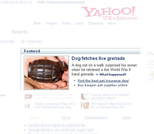 Yahoo pet insurance advert