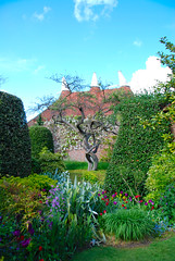 Oast House, Twisted Tree, Hedges & Border at Great Dixter (antonychammond) Tags: uk flowers england tree gardens britain border eastsussex hedges christopherlloyd oasthouse greatdixter welltaken flickraward winnr scenicsnotjustlandscapes landscapedreams treesdiestandingup vosplusbellesphotos